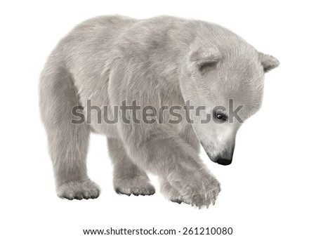 3D digital render of a cute polar bear isolated on white background - stock photo