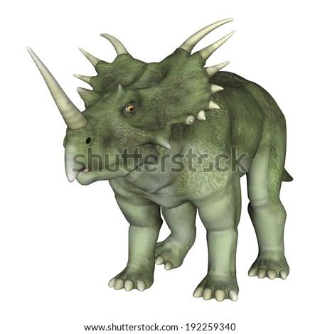 3D digital render of a dinosaur Styracosaurus or spiked lizard, a genus of herbivorous ceratopsian dinosaur from the Cretaceous Period (Campanian stage) isolated on white backround - stock photo