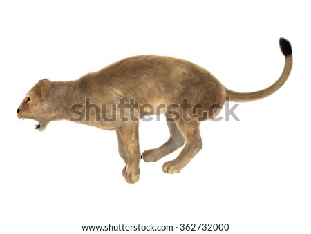 3D digital render of a female lion jumping isolated on white background