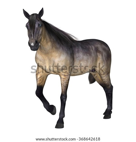 3D digital render of a grulla horse isolated on white background