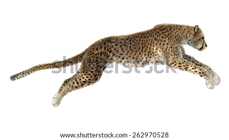3D digital render of a jumping cheetah isolated on white background