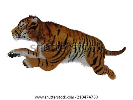 3D digital render of a jumping tiger isolated on white background - stock photo