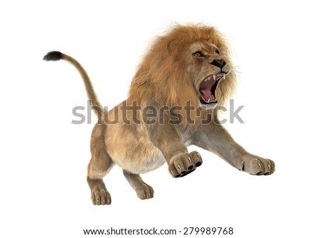 3D digital render of a male lion isolated on white background - stock photo