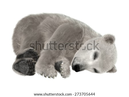 3D digital render of a polar bear cub sleeping isolated on white background