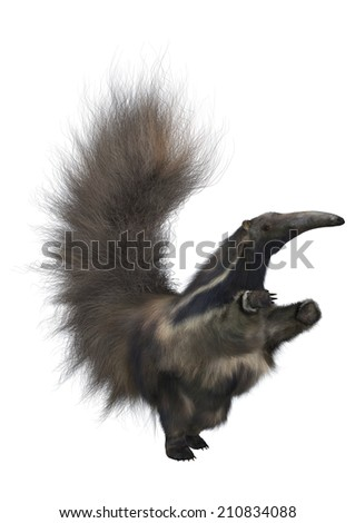 3D digital render of an amazing animal anteater isolated on white background