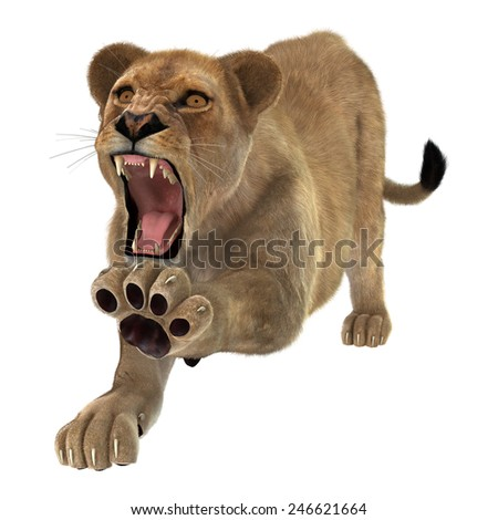 3D digital render of an angry roaring female lion isolated on white background - stock photo