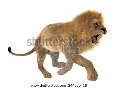 3D digital render of an angry running male lion isolated on white background - stock photo