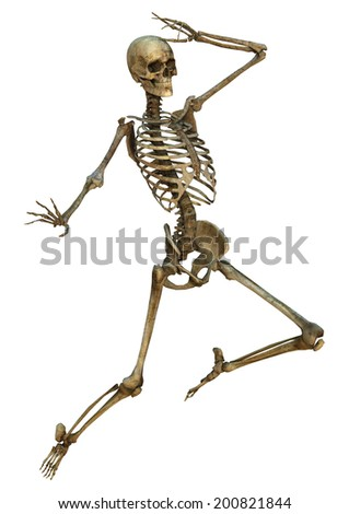 3D digital render of an old human skeleton isolated on white background - stock photo