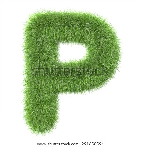 "3d ""Grass"" creative decorative letter P"