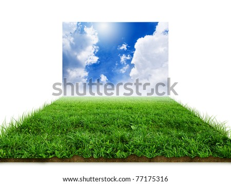 """3D"" grass with sky background image"