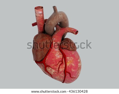 3D Human Heart - Anatomy of Human Heart - stock photo
