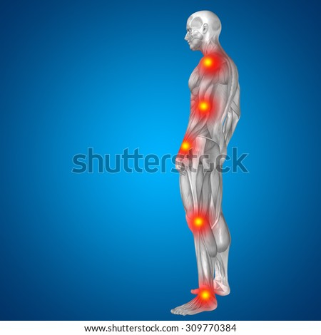 3D human, man with muscles for anatomy, health designs with articular, bones pain, isolated on blue background for medical, health, science, rheumatism, inflamation, injury, osteoporosis, disease - stock photo