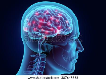 3D illustration brain nervous system active, medical concept. - stock photo