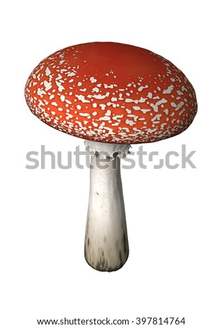 3D Illustration of a fly agaric or fly amanita or Amanita muscaria  isolated on white background - stock photo
