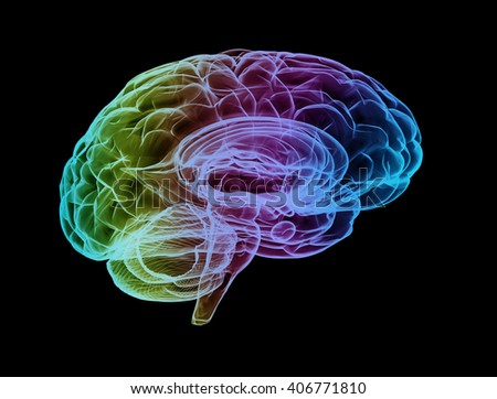 3d illustration of a x-ray brain with creative colors  - stock photo