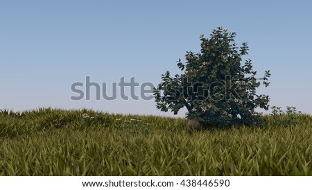 3d illustration of blooming magnolia tree in grass field - stock photo