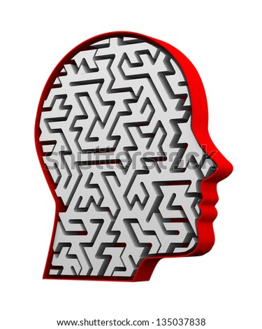 3d illustration of complex maze pattern in human face head - stock photo