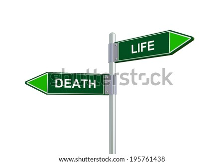 3d illustration of death and life road sign