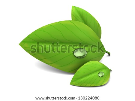3d illustration of green leafs over white background - stock photo