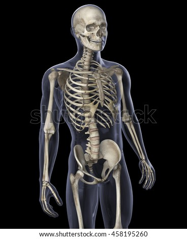 3D Illustration of Skeleton on a Black Background