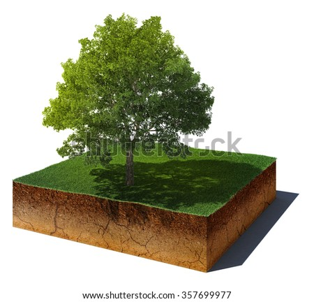 3d illustration of soil cutaway. Aerial view dirt cube with tree isolated on white background
