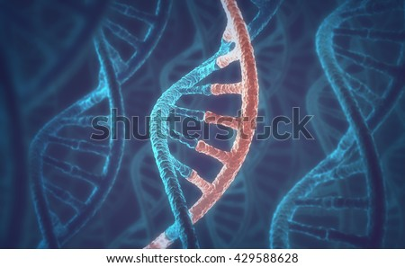 3D image concept of DNA and RNA molecules. - stock photo