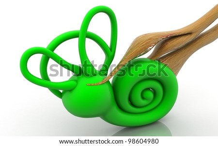 3d inner ear. cochlea on a white background - stock photo