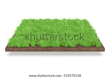 3D Isolated Natural Grass Background.