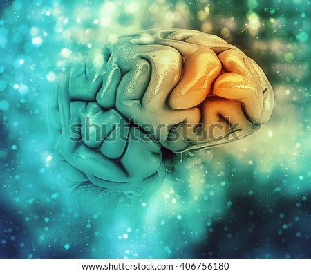 3D medical background with brain with frontal lobe highlighted - stock photo