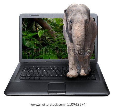 3D Notebook With Elephant on the Screen - isolated on White - stock photo