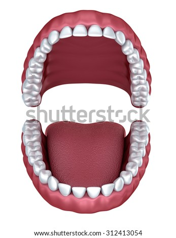 3d open denture isolated on white - stock photo