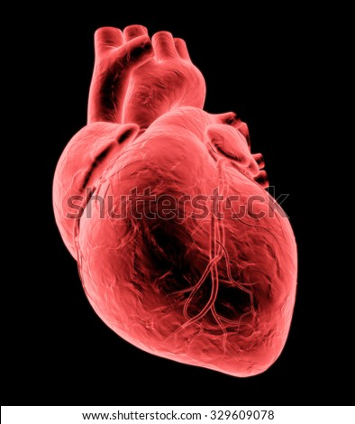 3d red x-ray heart, isolated on black background - stock photo
