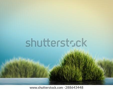 3d render aquatic plant - stock photo