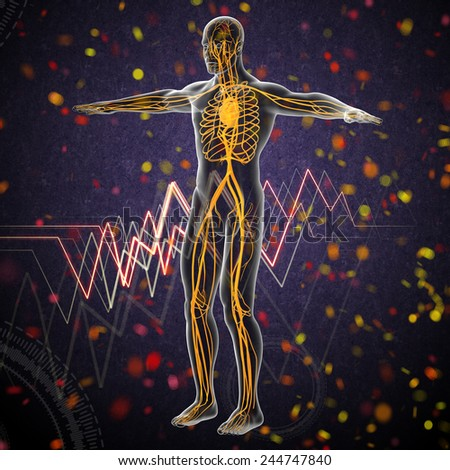 3d render medical illustration of the human vascular system - side view - stock photo
