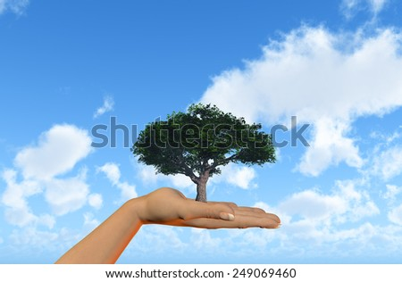 3D render of a female hand holding a tree against a blue sky with clouds - stock photo