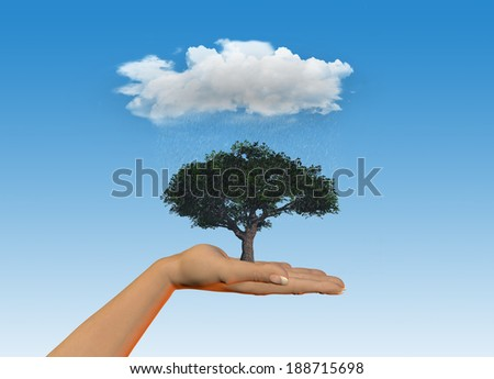 3D render of a female hand holding a tree under a rainy cloud - stock photo