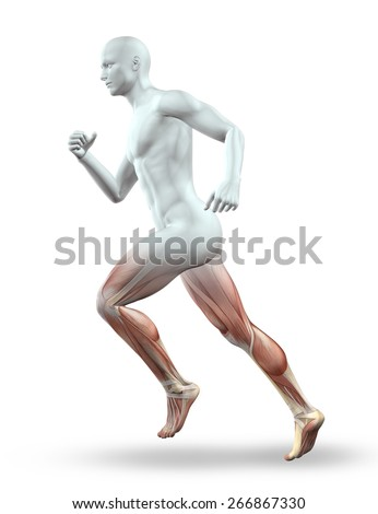 3D render of a male figure with skeleton running  - stock photo