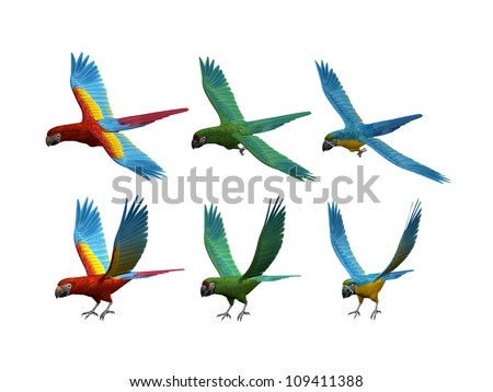 3D render of 6 macaws in flight with different colors and poses isolated on a white background - stock photo