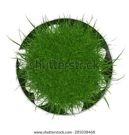 3d render plant pot top view  - stock photo