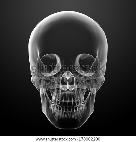 3d render skull on black background - front view - stock photo