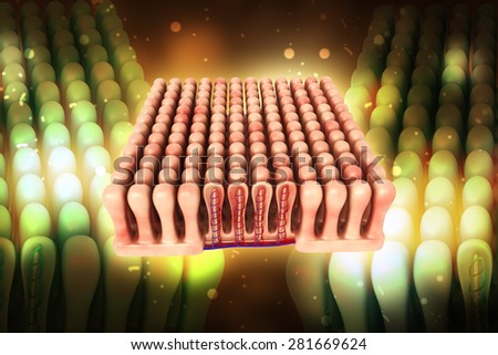 3d rendered colon villi in color background - stock photo