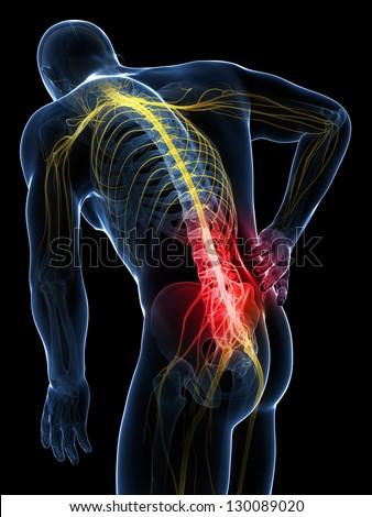 3d rendered illustration - backache male - stock photo
