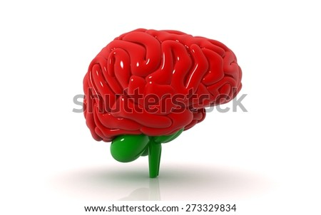 3d rendered illustration - color brain - stock photo