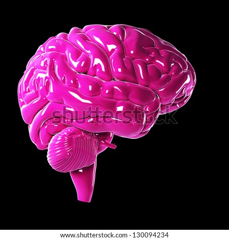 3d rendered illustration of a glossy pink brain - stock photo