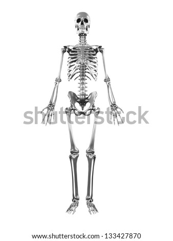 3d rendered illustration of a metal skeleton
