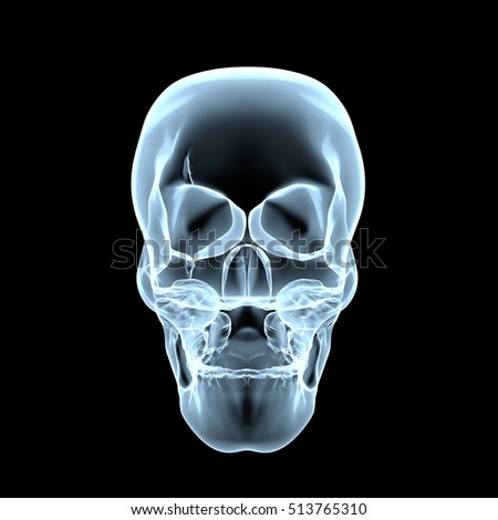 3d Rendering Illustration of xray skull