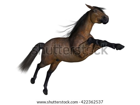 3D rendering of a bay horse isolated on white background