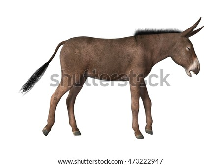 3D rendering of a donkey isolated on white background