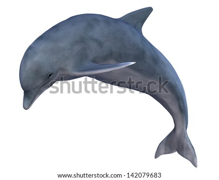 3D rendering of a jumping dolphin