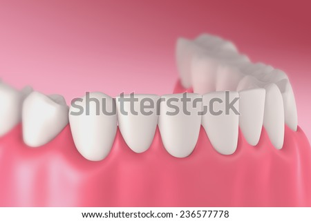3D teeth or tooth front view, closeup illustration